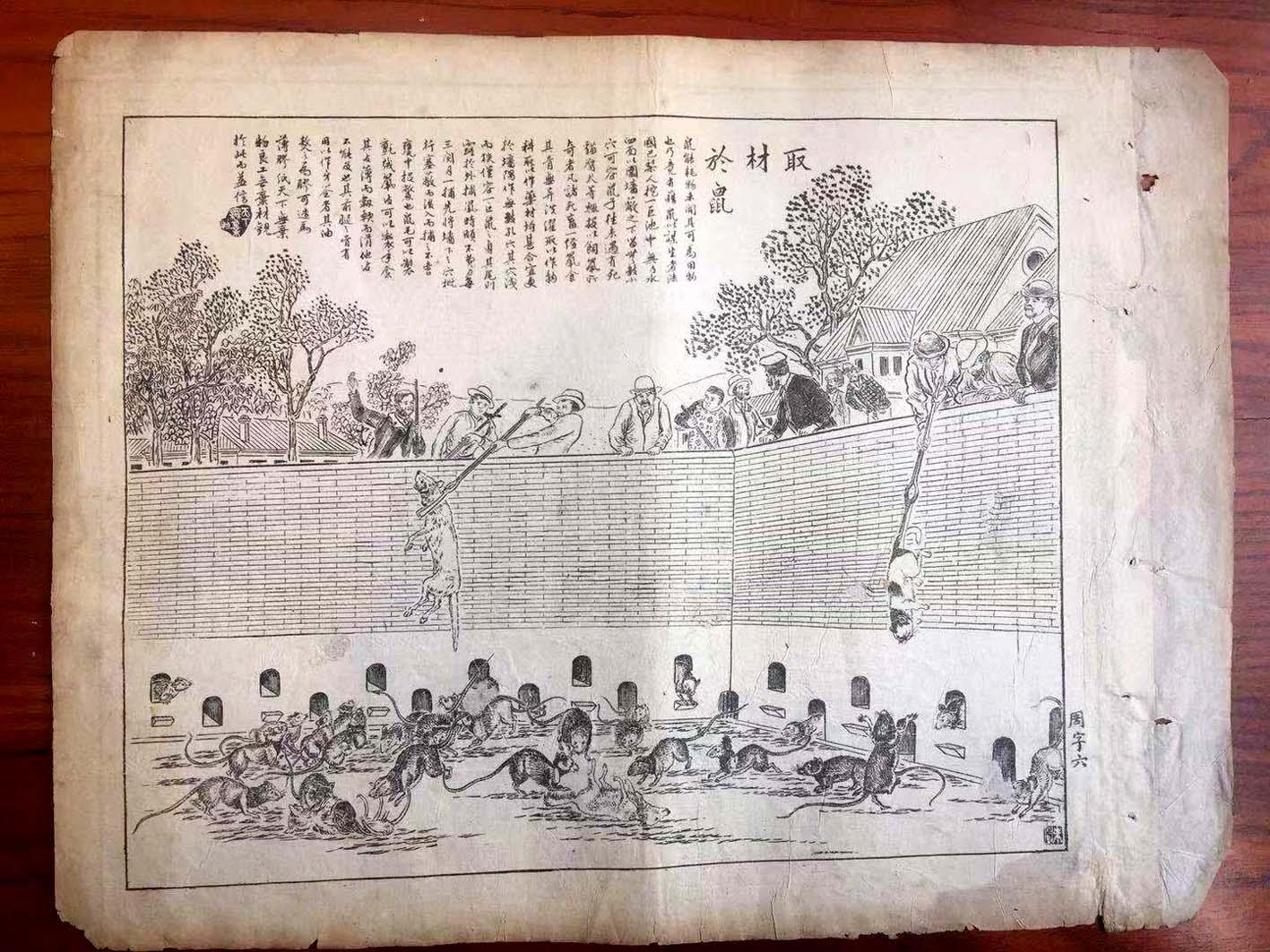 扬州藏家淘到光绪年间出版的《取材于鼠》石印画页