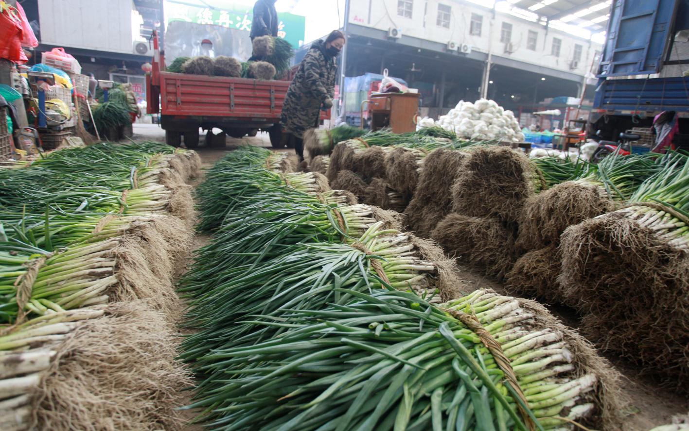 物資供應有保障市民采購趨理性糧食桶裝油日銷量降五成